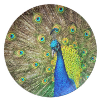 Peacock Party Plate