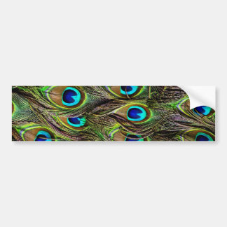 peacock pattern bumper sticker