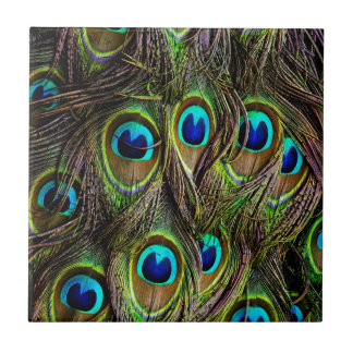 peacock pattern tile