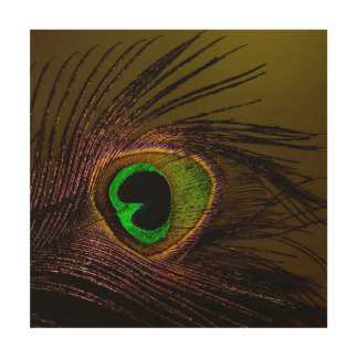 Peacock Peafowl Bird Wood Canvases