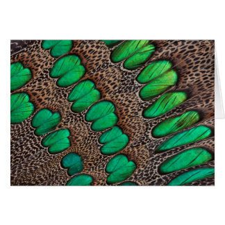 Peacock Pheasant Feather Abstract Card