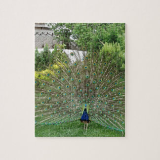 "Peacock Photo 8"" x 10"" Photo Puzzle with Gift Box"