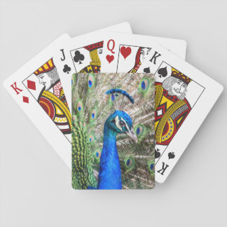 Peacock Playing Cards