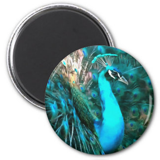 Peacock Plumage 2 Inch Round Magnet