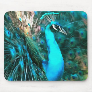 Peacock Plumage Mouse Pad