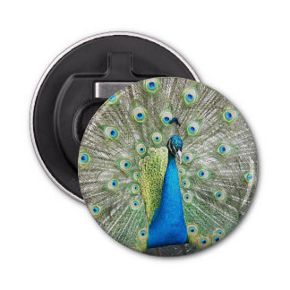 Peacock Plumage Photo Button Bottle Opener