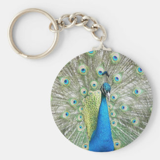 Peacock Plumage Photo Keychain