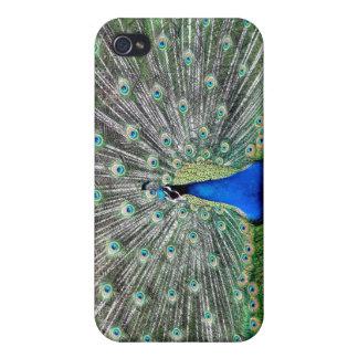 Peacock Plume iPhone 4 Case
