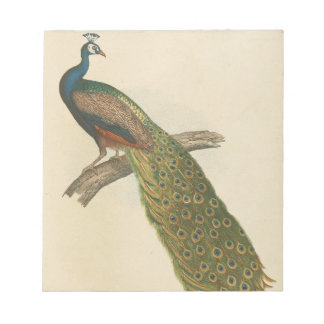 Peacock pretty notepad