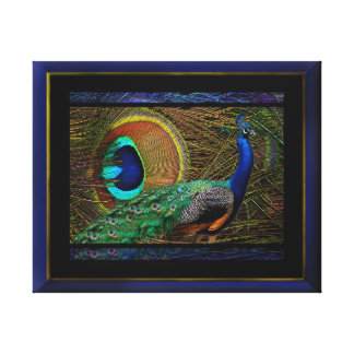Peacock Royalty 2 Canvas Print