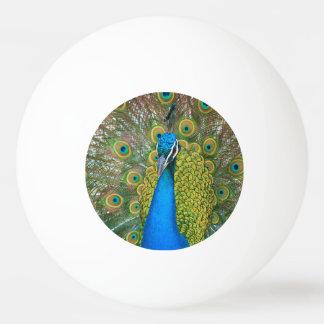 Peacock S9K.jpg Ping-Pong Ball