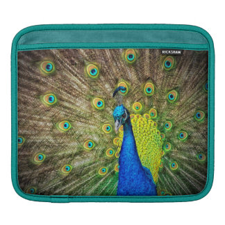 Peacock Sleeves For iPads