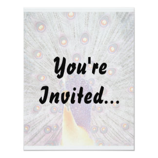Peacock Tail and Head Inverted Colours Photo Personalized Invitation