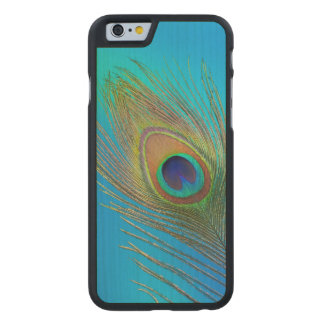 Peacock Tail Feather Carved Maple iPhone 6 Case