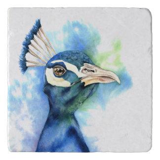 Peacock Watercolor Painting Trivet