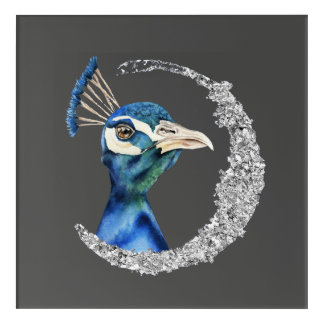 Peacock Watercolor with Faux Silver Glitter Acrylic Print