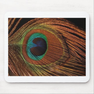 peacocks-plume-1red and gold mouse pad