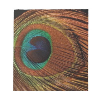 peacocks-plume-1red and gold notepad