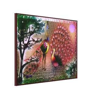 Peacocks Stretched Canvas Print