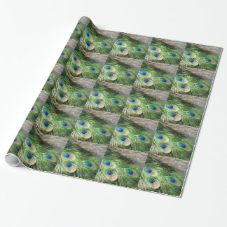 Peacok Feathers Gift Wrapping Paper  Peacok