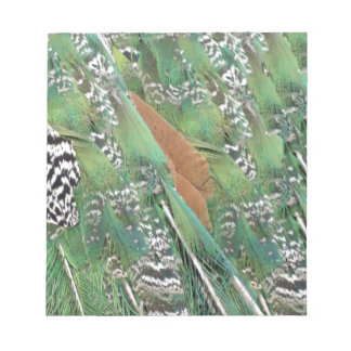 Peafowl Feathers Mixed Colors Scratch Pad