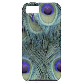 Peafowl Feathers With Big Eyes iPhone 5 Cover