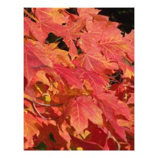 Peak leaves flyer