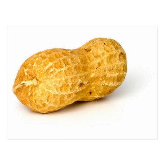Peanut.png Postcard