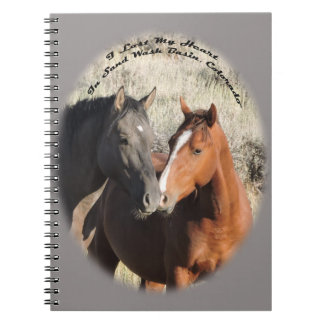 Peanut & Surma, stallions in Sand Wash Basin Notebook
