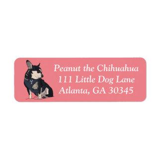 Peanut the Chihuahua Address Labels