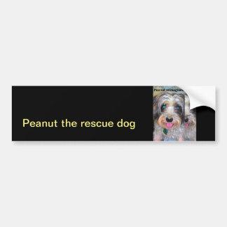 peanut the rescue dog bumper sticker