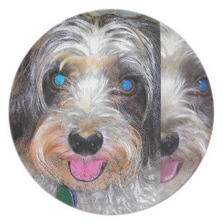 peanut the rescue dog plate