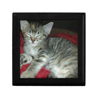 Peapicker kitty gift box