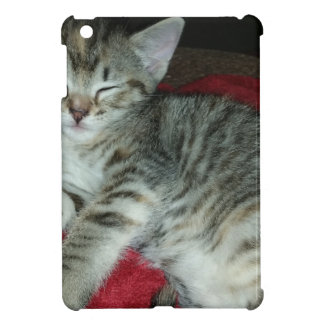 Peapicker kitty iPad mini case