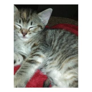 Peapicker kitty letterhead template