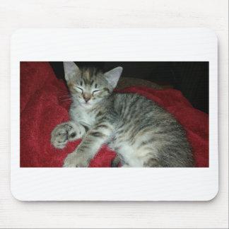 Peapicker kitty mouse pad
