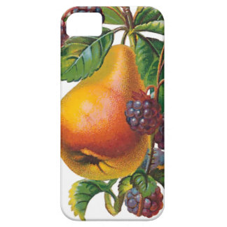 Pear and Blackberries iPhone 5/5S Case