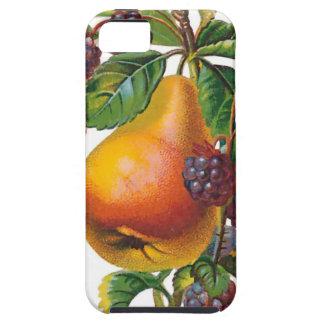 Pear and Blackberries iPhone 5 Case