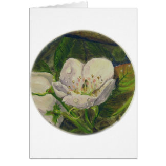 Pear Blossom Dream Card