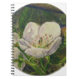 Pear Blossom Dream Notebooks