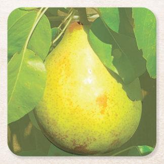 Pear Coaster