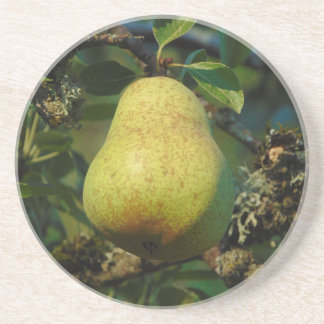 Pear Coasters