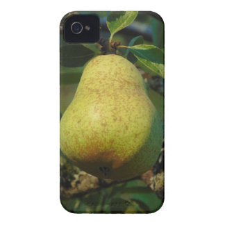 Pear iPhone 4 Case