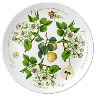 Pear Platter (You can customize) Plate