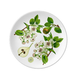 Pear Small Porcelain Plate (You can customize)