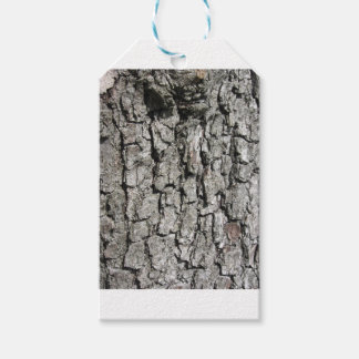 Pear tree bark texture background gift tags