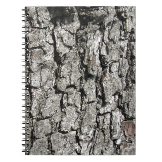 Pear tree bark texture background notebooks