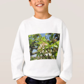 Pear tree branches with blossoms sweatshirt