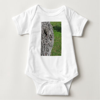 Pear tree trunk against green background baby bodysuit