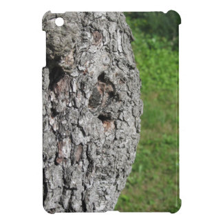 Pear tree trunk against green background iPad mini cover